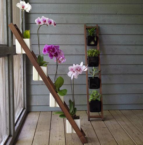 Vertical_Garden07