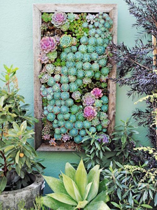 Vertical_Garden09